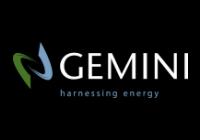 Gemini  Corporate  Structuring